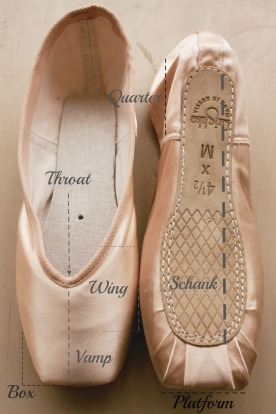 pointe shoe diagram